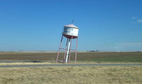 Homegrown Groom, Texas