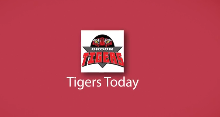 Tigers Today - March 1
