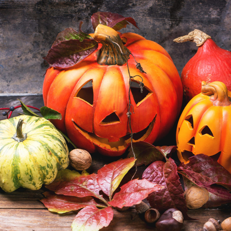 Halloween+is+a+lot+of+people%27s+favorite+holiday.+It+can+be+fun%2C+but+also+dangerous.+Follow+these+tips+to+stay+safe+this+Halloween.+%22I+think+Halloween+can+be+a+fun+time+for+everyone%2C+as+long+as+you+make+sure+to+stay+safe%2C%22+junior+Kaylie+Ritter+said.