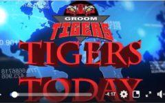 Tigers Today – Nov. 14
