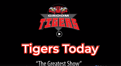 Tigers Today - Feb 26