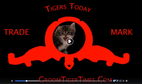 Tigers Today - Feb 25